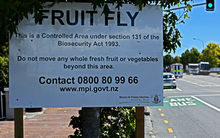 Ministry for Primary Industries sign warning of biosecurity area in Grey Lynn, Auckland.