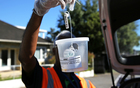 Ministry for Primary Industries contractor holding a fruit fly trap for fruit tree owners in Grey Lynn, Auckland.