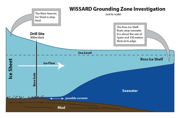 This diagram shows how the WISSARD team explored the grounding zone of the ice stream.