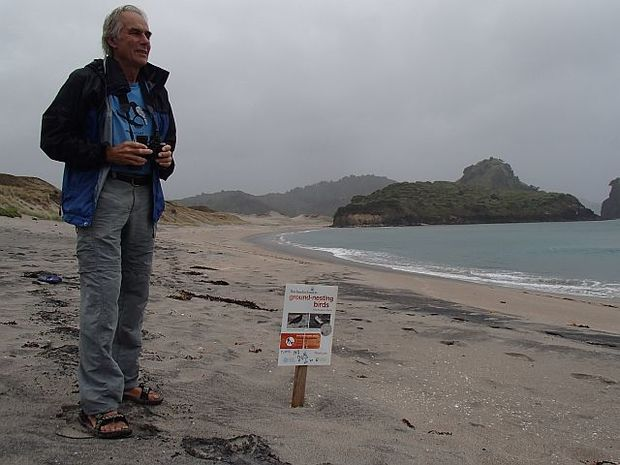 Botanist John Ogden takes a keen interest in the wildlife around his Great Barrier Island home, especially the New Zealand dotterels at Awana Bay.