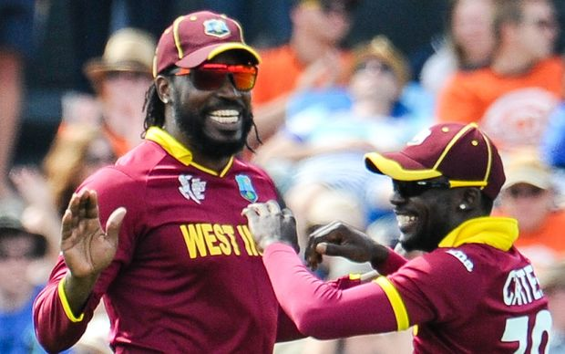 Batsman Chris Gayle celebrates a wicket with a West Indies team-mate.