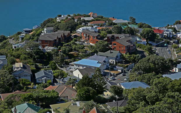 The suburb of Hataitai in Wellington.