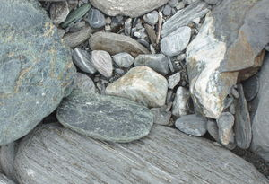 Pounamu amongst pebbles in a riverbed.