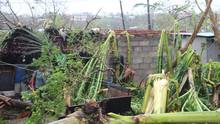 Homes destroyed in Vanuatu