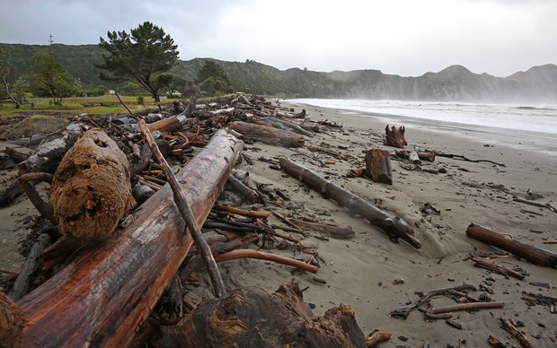 The aftermath on Tolaga Bay beach after Cyclone Pam passed through.