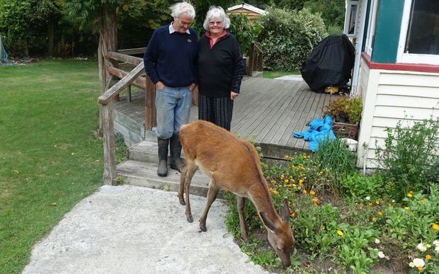 Kevin and Sandy Topp with pet fawn, who was left for dead in the wild after her mother was shot by a poacher.