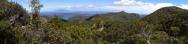 View from the largest black petrel colony on Hirakimata/Mount Hobson on Great Barrier Island across to Hauturu/Little Barrier Island which is home to a very small colony of black petrels.
