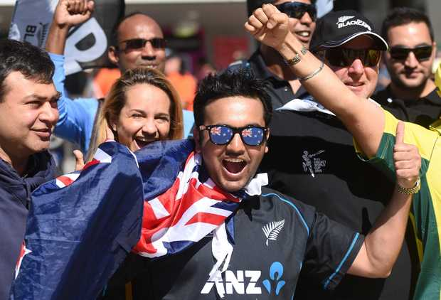 Fans at the ICC Cricket World Cup Final.