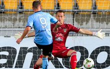 The Sydney FC striker Shane Smeltz scores a goal.