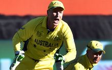Brad Haddin celebrates a wicket against New Zealand in the World Cup final.