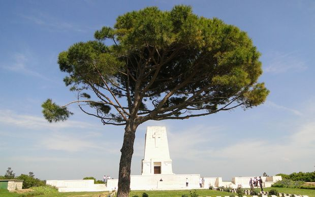 Christchurch City Council is to plant a tree descended from the Lone Pine at Gallipoli.