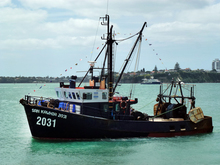 040314. Photo Todd Niall  / RNZ. Fishing boat, Auckland Harbour