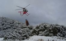 A helicopter collecting feral deer in Fiordland National Park.