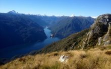 Helicopter collecting feral deer in Fiordland National Park.