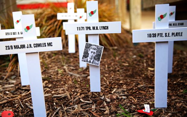 Crosses in a garden in Wellington pay tribute those who died in WWI.