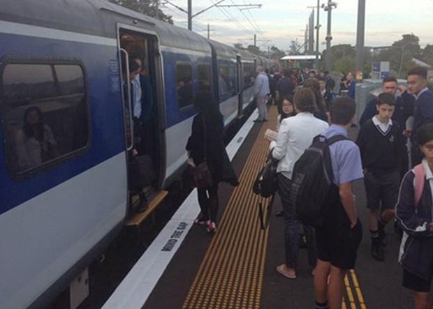 A platform full of people that could not fit on a full train, posted by @KateSearleNZ on the Transportblog twitter feed.