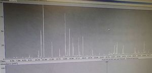 The hair samples are analysed in a GCMS (gas chromatography mass spectrometry) machine. The resulting graph shows individual metabolites or biomarkers appearing over time - the height of the peak relates to the amount that is present.
