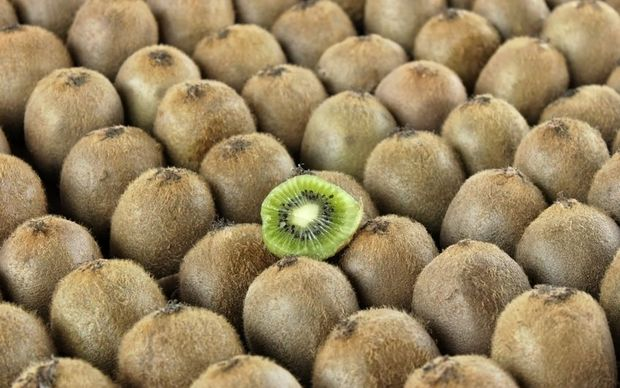 Green kiwifruit growers got their highest ever return per hectare of $53,884 and just over $6 a tray.