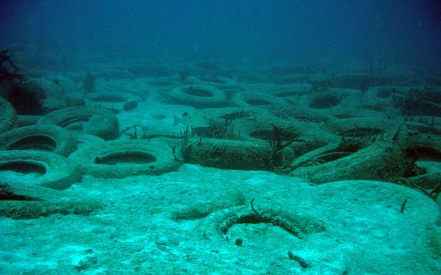 The tyres broke loose and have spread across the ocean floor. (Image February 2007)