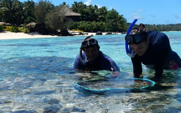 Joe Kaukura and Alice Mitchell, Aitutaki Marine Research Centre employees, helping put clams back in the lagoon in front of Pacific Resort Aitutaki.