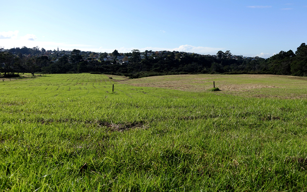 The Massey East parcel of Crown land identified for housing in Auckland.