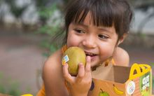 McDonald's Mexico will soon offer a kiwifruit in its happy meals.