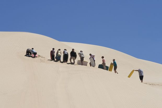 People waiting in line for the moment they can board downhill from a huge sand dune at 90 mile beach