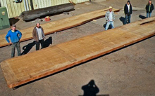The Ancientwood website showing two slabs of kauri.