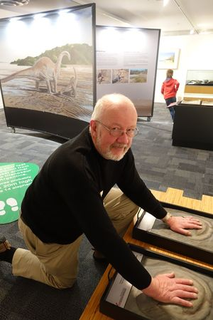 Nelson Provincial Museum chief executive Peter Millward checks out imprints of dinosaur footprints.