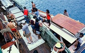 Loading the Rainbow Warrior ahead of its final Pacific journey in 1985