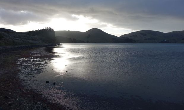 Papanui Inlet on Otago Peninsula