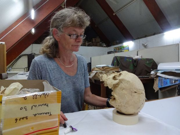 French archaeologist Frederique Valentin is measuring up one of the 3000-year-old skulls from the Teouma cemetery, at the museum collection in Port Vila.