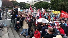 Wellington's protesters chant, clap and jeer on the steps of Parliament as guest speakers address the crowd
