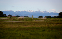 Photo from a Rongotea organic milk farm looking out towards the Tararua Ranges in the Manawatu.