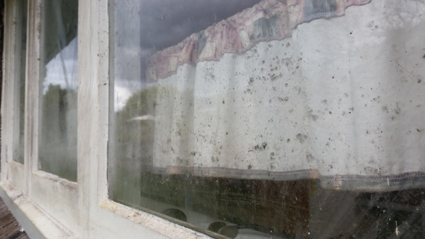 Black mould growing on the windows of the second house.