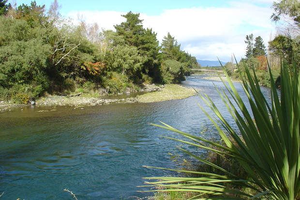 Water New Zealand wants more council cooperation with iwi.