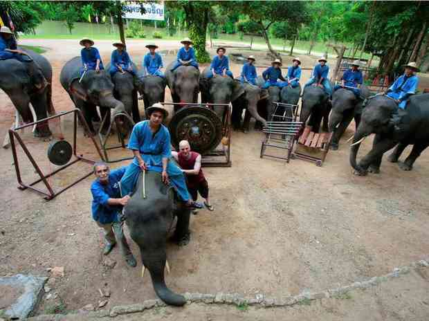 Dave Soldier (in red) and the Thai Elephant Orchestra
