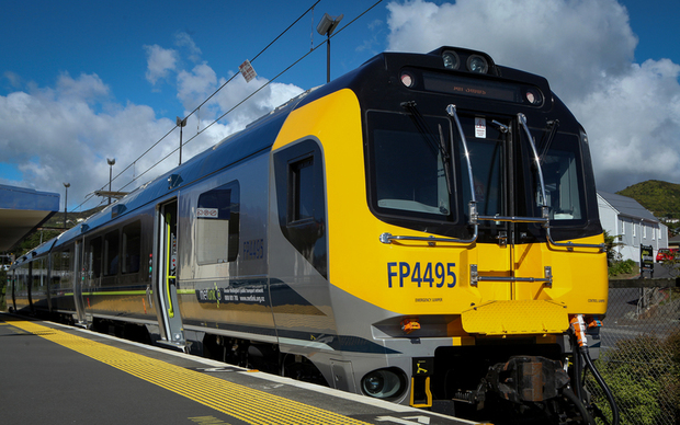 Wairarapa line suspended, one injured after tree falls on train