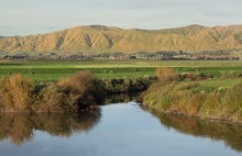 A stream near Shannon in Manawatu, which flows into the Manawatu River.