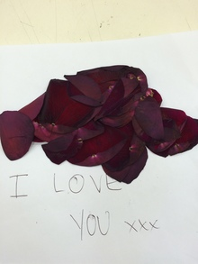 The rose petal-strewn love letter that Cleo detected