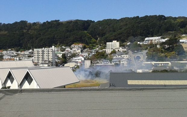 Grass fire on the bank at Wellington's Basin Reserve.