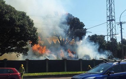 Scrub fire at Wellington's Basin Reserve.