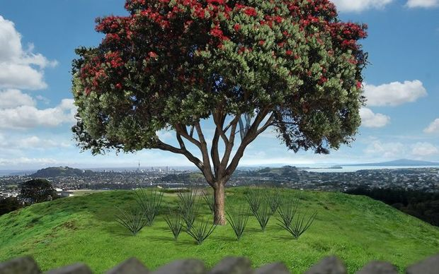 Year twenty: Single tree with kiekie. A pohutukawa is illustrated however the single tree could be either a tōtara or a pohutukawa.
