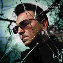 Richard Hawley - Hollow Meadows album cover