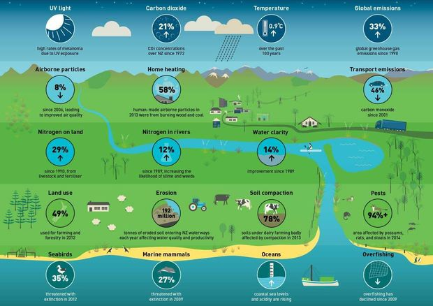 State of environment infographic