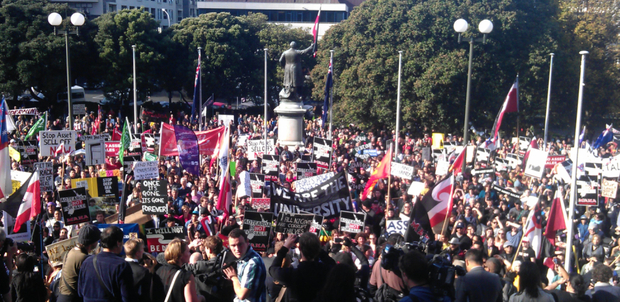 Protesters marched through Wellington to Parliament grounds.