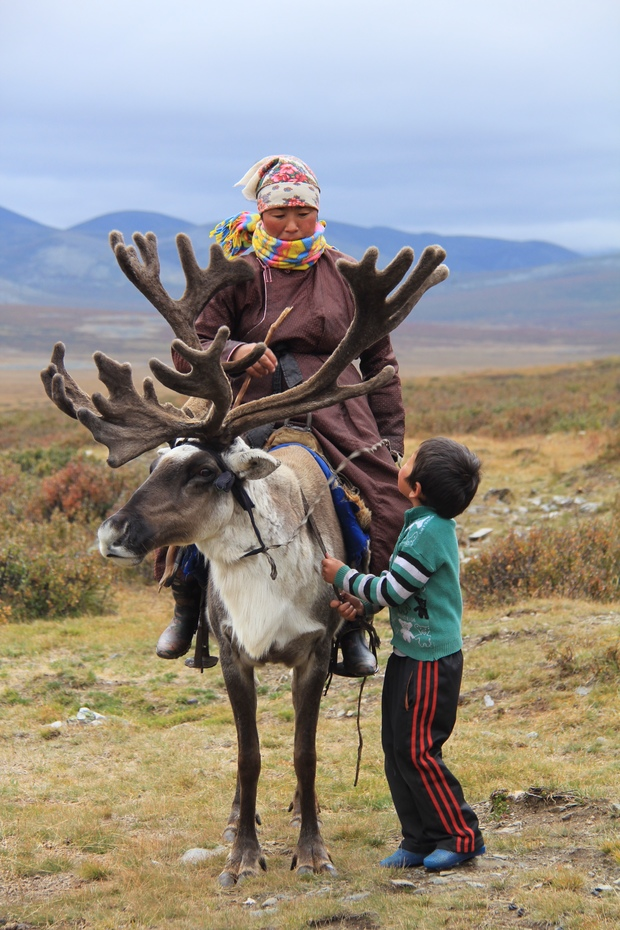 Our Own Odysseys: The Reindeer Tribe