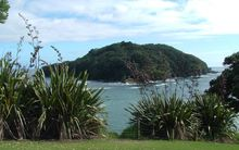 The Goat Island or Leigh marine reserve is New Zealand's oldest fully protected marine area.