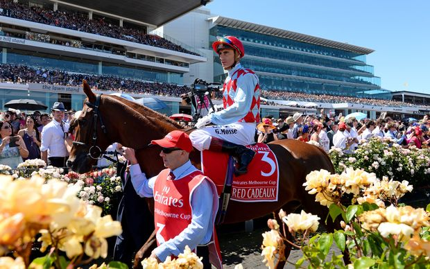 Red Cadeaux second in 2013 Melbourne Cup