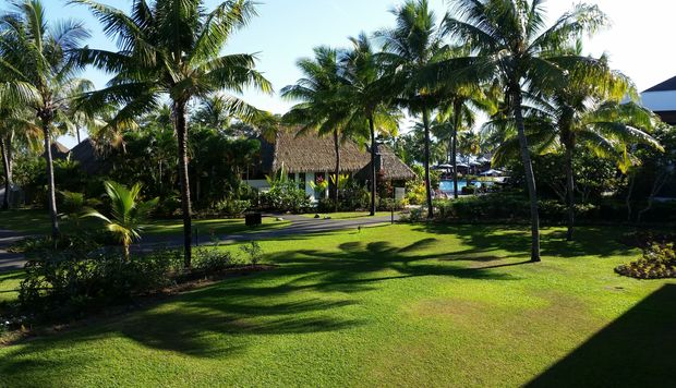 View of the grounds of the Sofitel Hotel in Denarau.